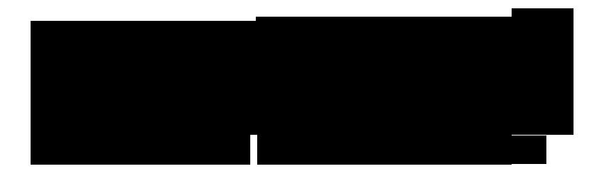 naturali-logo-inverno2017-black